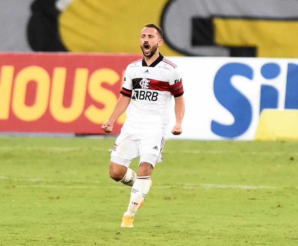 Éverton Ribeiro comemora gol em Botafogo x Flamengo — Foto: André Durão