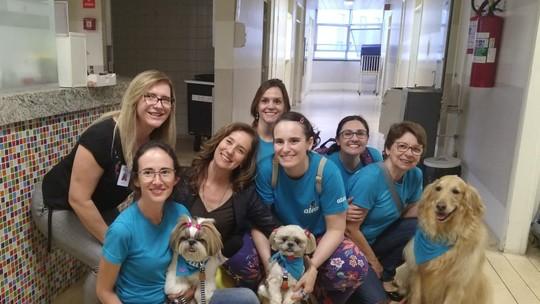 Cães voluntários visitam pacientes em hospitais de Campinas (SP)