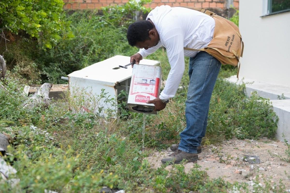 Prefeitura prepara mobilização contra o Aedes Aegypti e deve visitar mais de 11 mil imóveis em Boa Vista