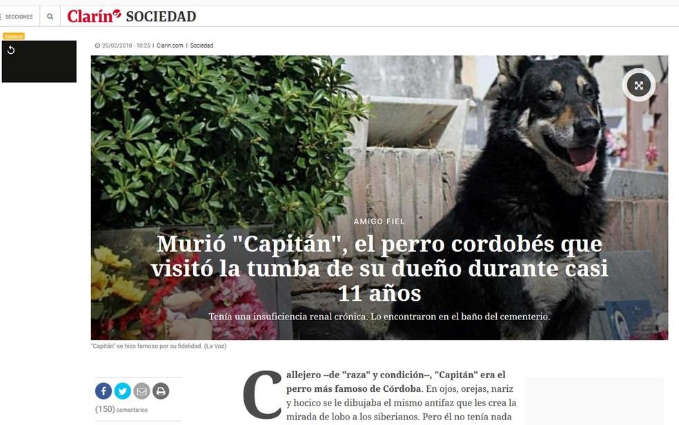 'Capitán' zela túmulo de seu dono (Foto: Reprodução / La Voz / via Clarín)