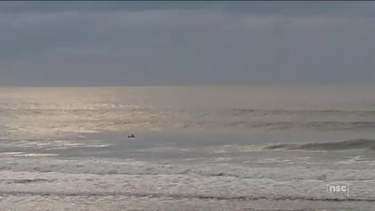 Baleias-francas começam a chegar ao litoral de Santa Catarina para a temporada 2018; veja vídeo