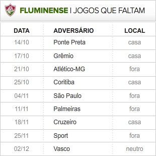 Fluminense_9-ultimas_rodadas (Foto: infoesporte)