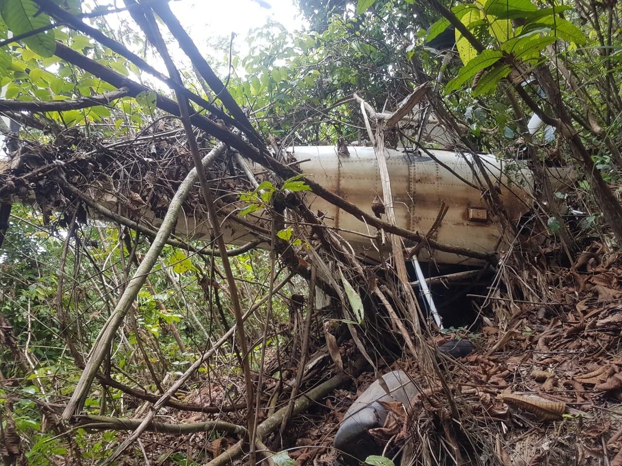 Avião desaparecido há 4 meses é encontrado em área de garimpo no PA; corpo de piloto é removido - Notícias - Plantão Diário