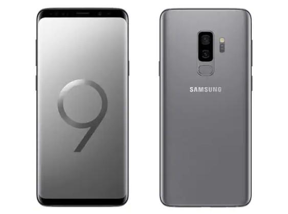 O smartphone Samsung Galaxy 9+ (Foto: Divulgação)
