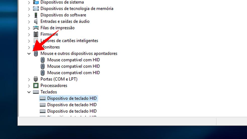 Habilite a funo tambm nos dispositivos de mouse do Windows  Foto ReproduoPaulo Alves