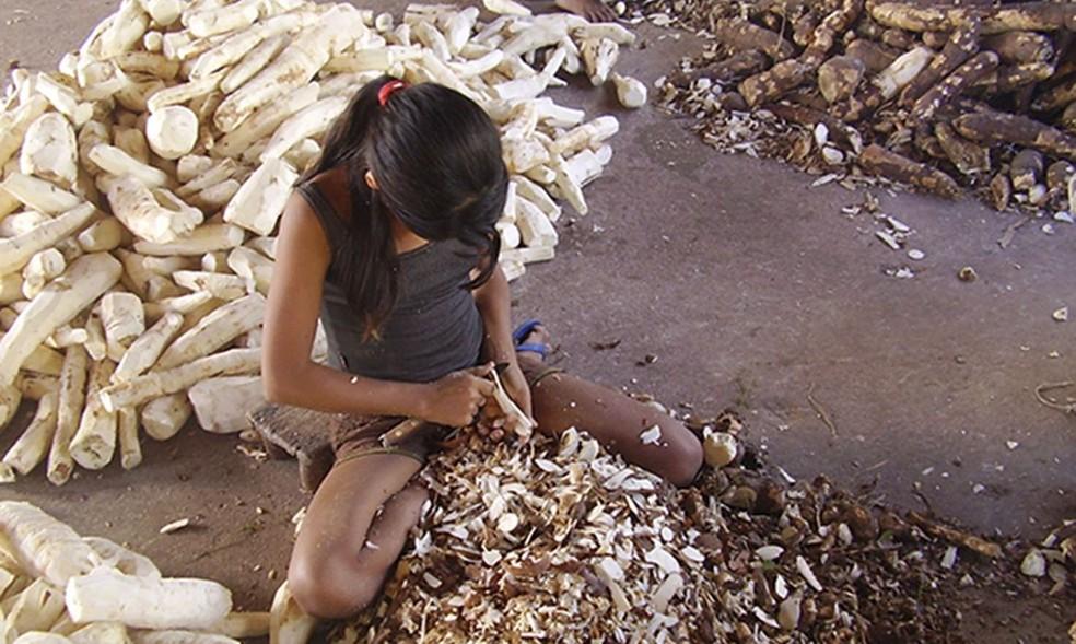 Webnário discute combate ao trabalho infantil no Brasil — Foto: Ministério Público do Trabalho