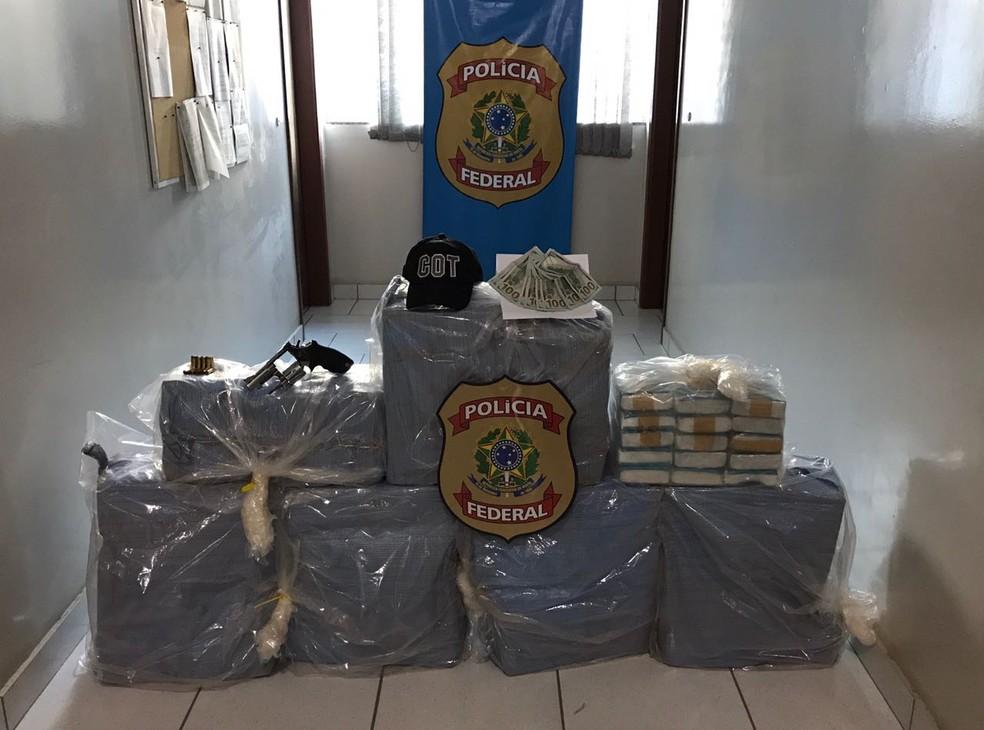 Droga foi apreendida e levada para a sede da Polícia Federal em Sinop (Foto: Polícia Federal de MT/Assessoria)