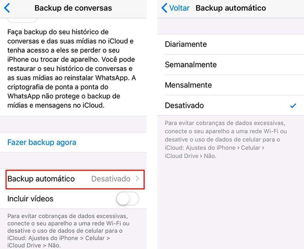 Ative o backup automático para nunca perder conversas importantes — Foto: Reprodução/Luana Antunes