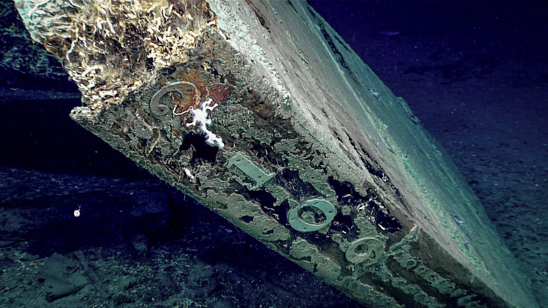 "The numbers ""2109"" are visible along the trailing edge of the rudder. The pattern of nails securing the copper sheathing is plainly visible. (Foto: NOAA)"
