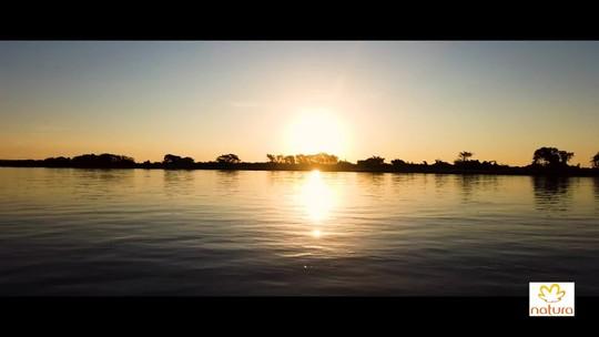 Veja onde e como fazer turismo de observação de onças no Pantanal