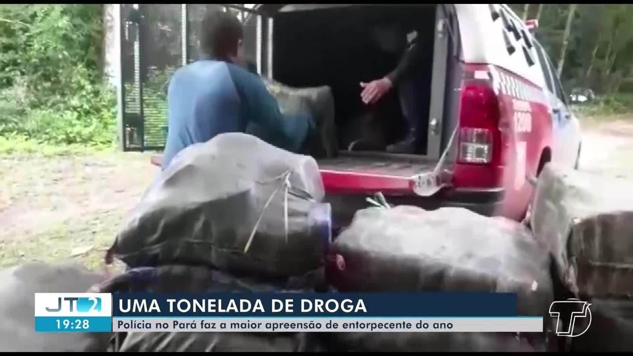 Polícia no Pará faz a maior apreensão de entorpecente do ano