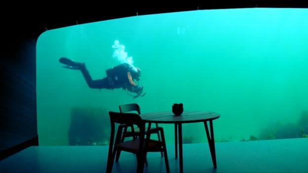 Através da pesquisa, gastronomia e arquitetura, o Under busca aproximar o ser humano do ecossistema marinho (Foto: Divulgação)