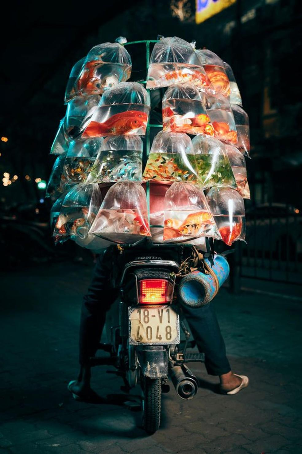 Grande prêmio: Foto de peixes ornamentais levados para entrega por um motoqueiro em Hanói, no Vietnã, foi a vencedora de concurso — Foto: John Enoch via Smithsonian Mag