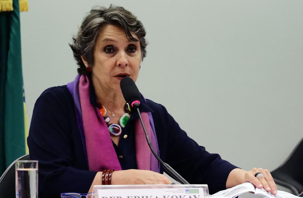 A deputada Érika Kokay (PT-DF), durante audiência pública na Câmara (Foto: Will Shutter/Câmara dos Deputados)