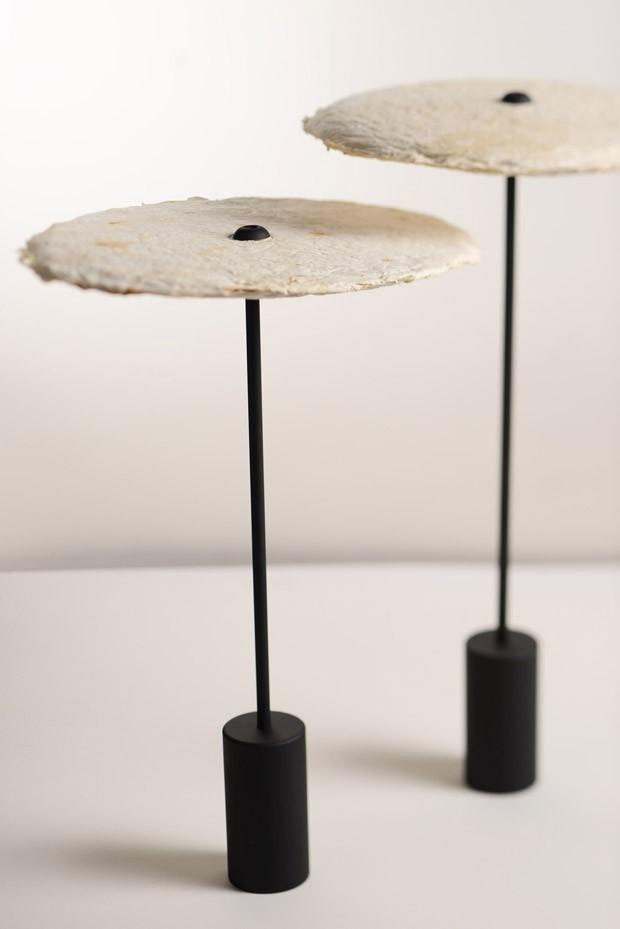 Luminárias sustentáveis produzidas com cogumelos (Foto: Divulgação)