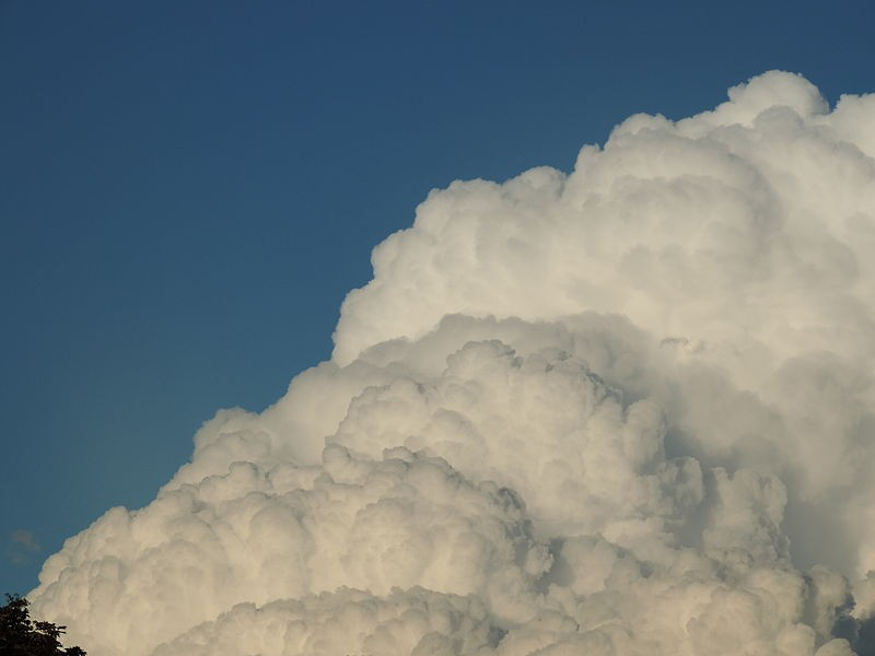 Nuvem do tipo cumulus (Foto: BCR95/Wikimedia Commons)