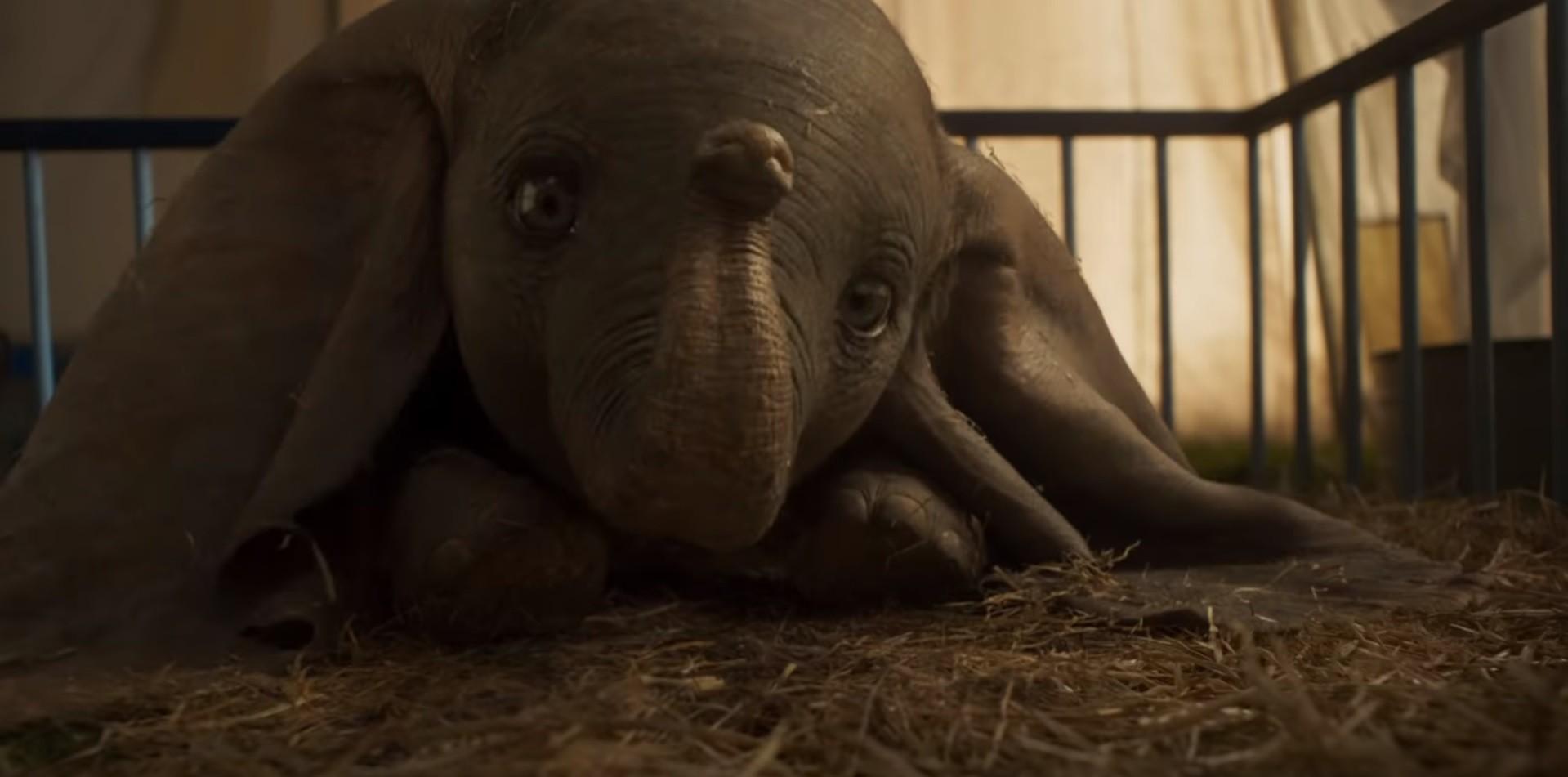 Dumbo (Foto: Divulgação)