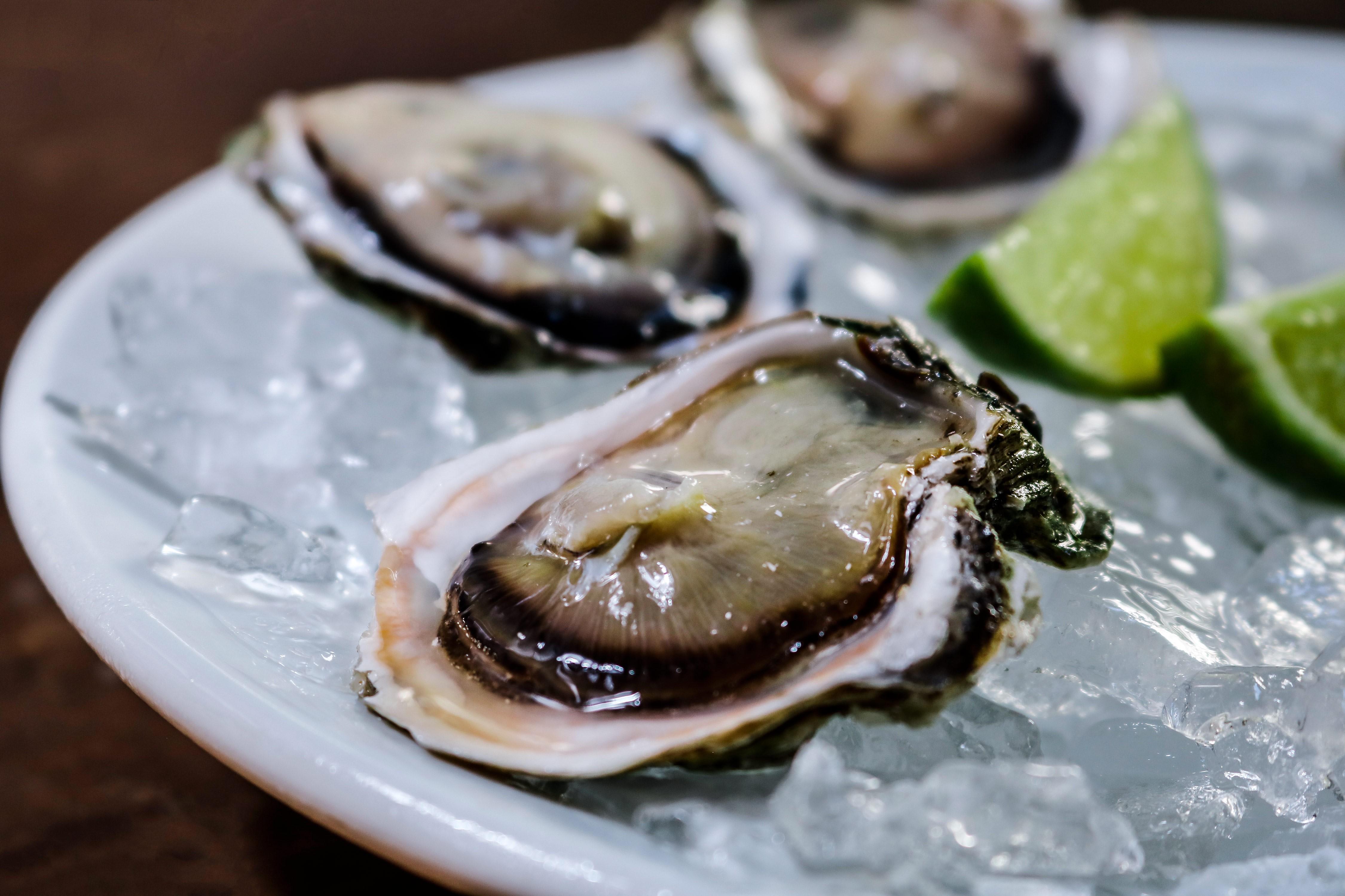 Festival de ostras no Umas & Ostras