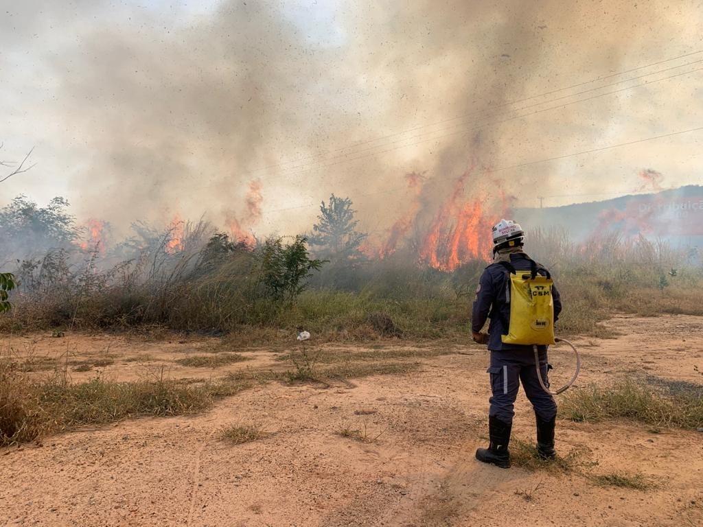 Incêndio atinge área de vegetação às margens de rodovia em Barreiras; bombeiros debelaram chamas