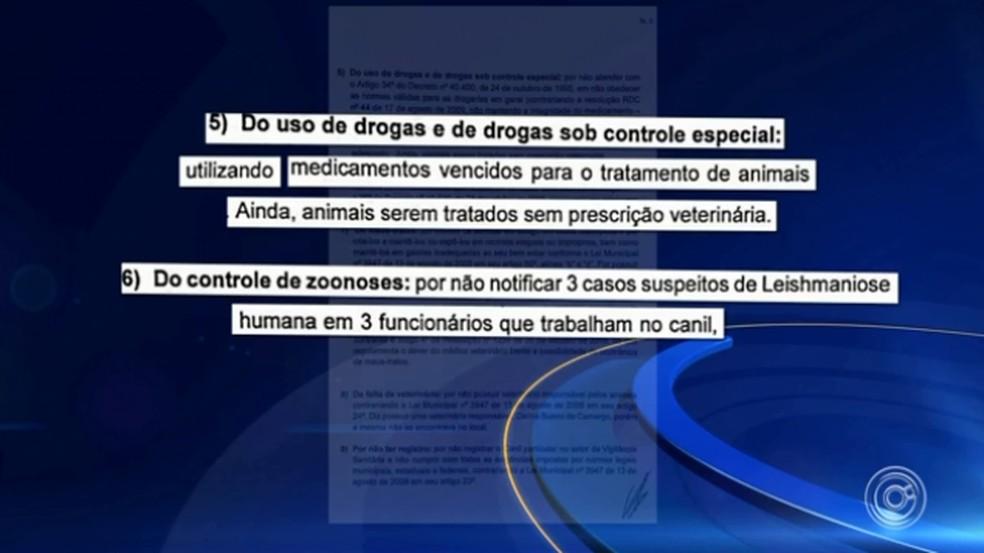 Canil fechado por suspeita de maus-tratos não notificou zoonoses sobre leishmaniose em funcionários, aponta relatório — Foto: TV TEM/Reprodução