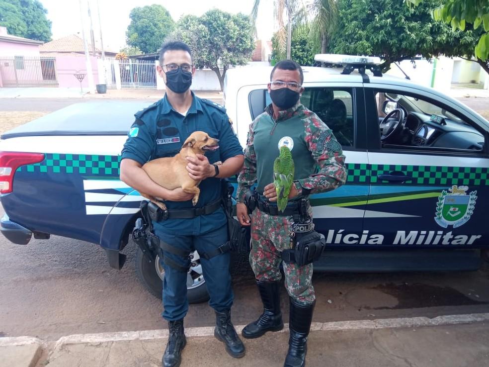 Policiais Militares Ambientais multam mãe de adolescente que praticou maus-tratos à animais em MS — Foto: PMA-MS/Divulgação