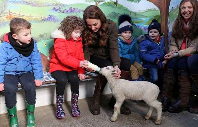 NEWTOWNARDS, NORTHERN IRELAND - FEBRUARY 12: Catherine, Duchess of Cambridge helps feed a Lamb with children from two local nurseries during a visit to The Ark Open Farm on February 12, 2020 in Newtownards, Northern Ireland. This visit is part of her Earl (Foto: Getty Images)