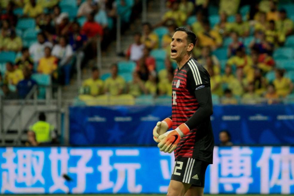 Gatito fez boa Copa América — Foto: MAURO AKIIN NASSOR/FOTOARENA/ESTADÃO CONTEÚDO
