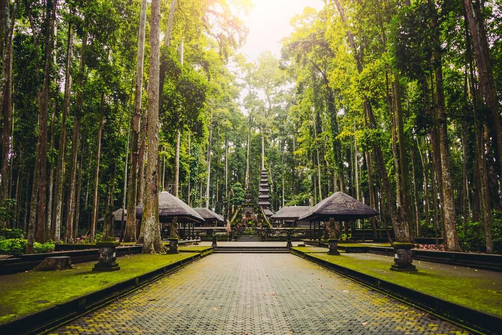 Ubud, Indonésia — Foto: Divulgação/Booking