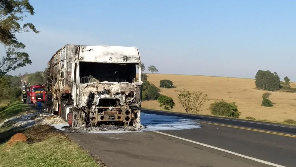 Veículo ficou completamente destruído (Foto: Vanessa Rumor/RPC)