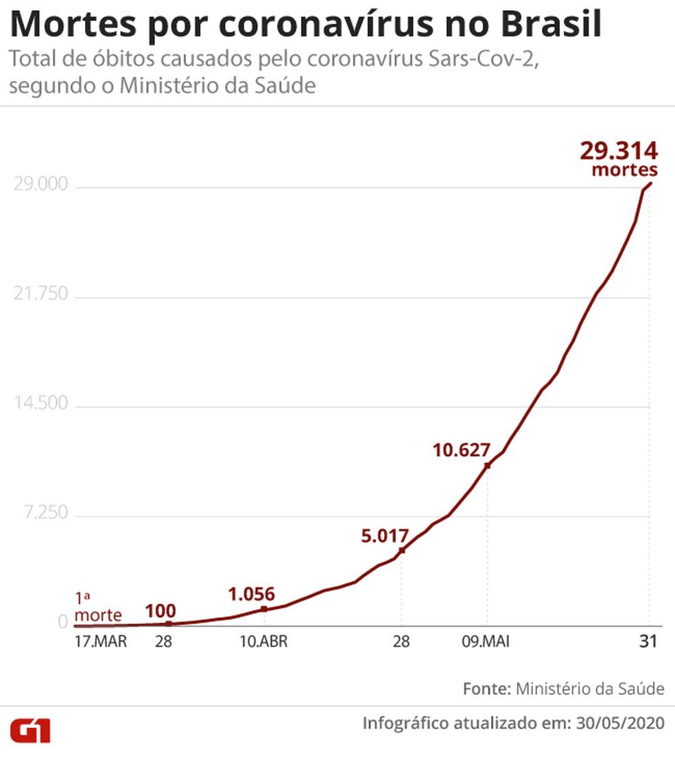 Mortes por coronavírus no Brasil — Foto: Aparecido Gonçalves/G1