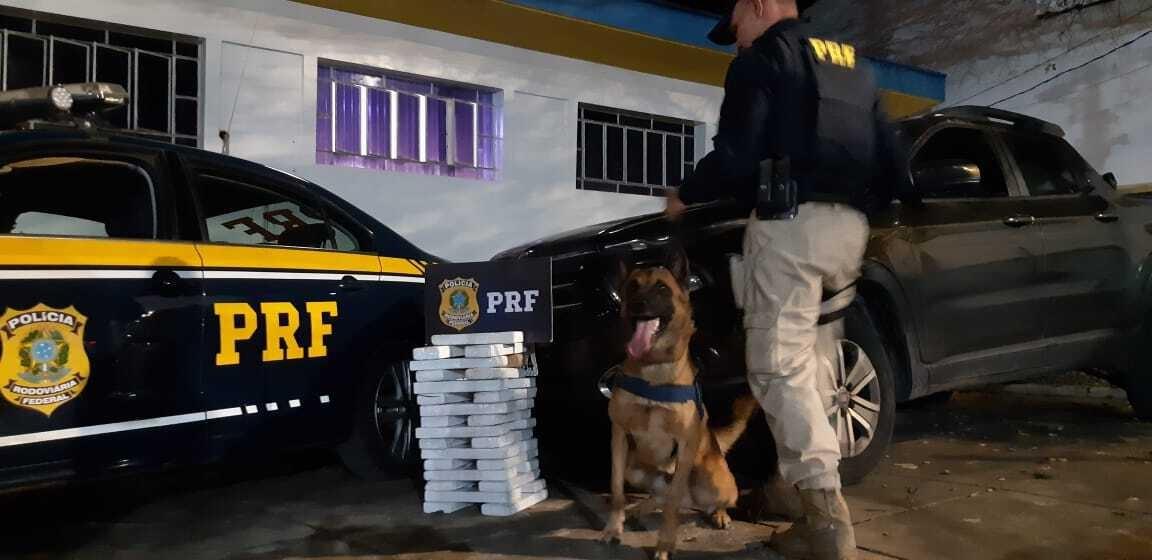 Dois homens são presos por tráfico com drogas escondidas em carro na Fernão Dias