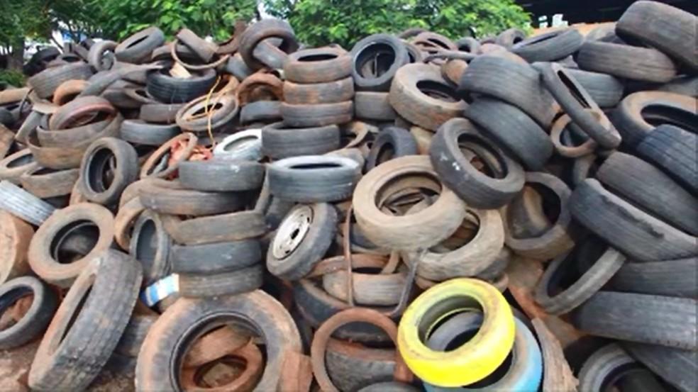 Centenas de pneus foram recolhidos durante mutirão de limpeza, em Cascavel — Foto: Prefeitura de Cascavel/Divulgação