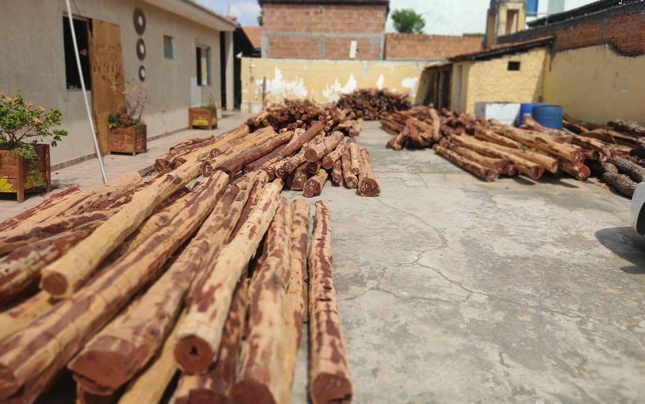 VÍDEO: Carga com mais de 500 toras de aroeira é apreendida no oeste da Bahia; condutor do veículo fugiu do local
