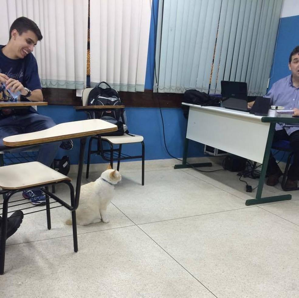 Branco acompanha aula de Direito na Fatec de Santos — Foto: Arquivo Pessoal