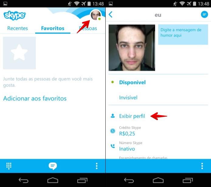 Acesse o seu perfil do Skype (Foto: Reprodução/Helito Bijora)