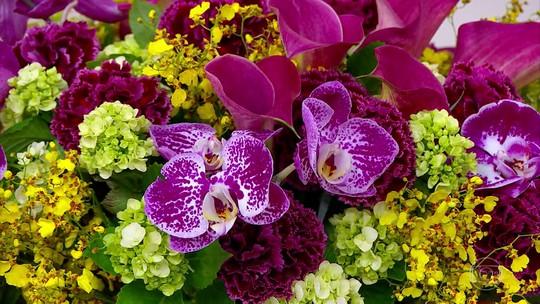 Bem Estar explica como as flores podem ser aliadas da saúde