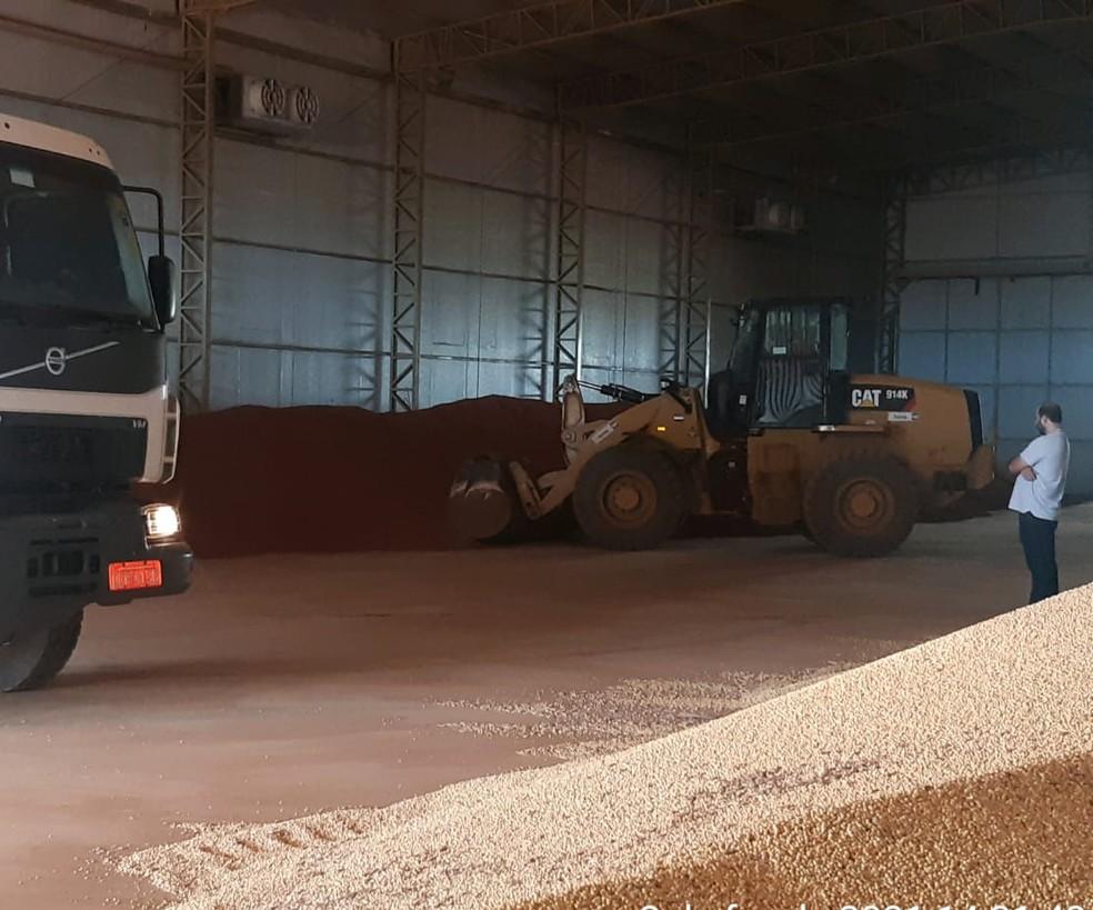 Mais de 150 toneladas de fertilizante foram apreendidos — Foto: Polícia Civil