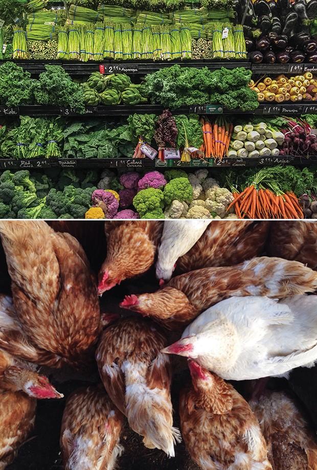 Sustentabilidade: O objetivo global é dobrar o consumo de frutas, hortaliças, legumes e frutas secas e reduzir pela metade o de carne vermelha e açúcar (Foto: Getty Images)