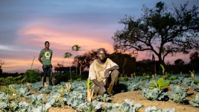 Investimentos - como compra de uma bomba d'água para irrigação - podem fornecer uma renda agrícola sustentável para agricultores como Sanfo Karim, em Burkina Faso (Foto: OLLIVIER GIRARD/CIFOR, via BBC News Brasil)