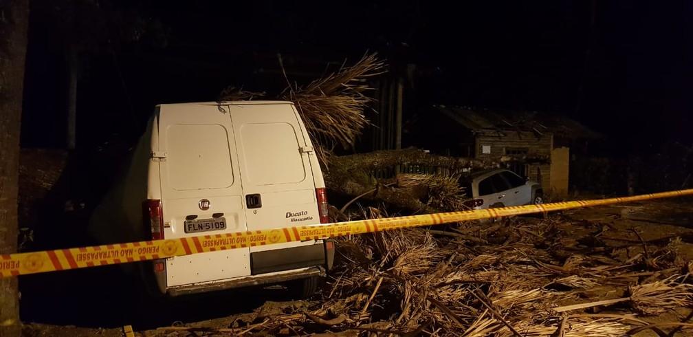 Veículos atingidos por queda de árvore em Florianópolis — Foto: Paulo Mueller/ NSC TV