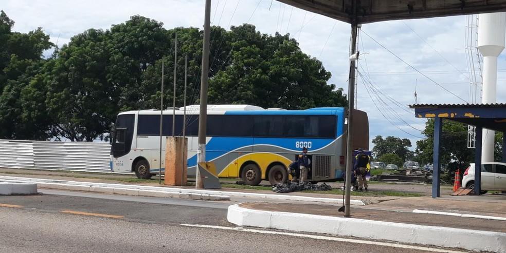 Droga foi encontrada em ônibus que seguia para o sul de MT (Foto: Márcio Fidélis/Dia a Dia do Vale)