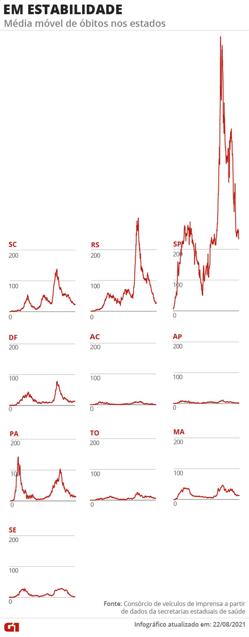 Estados com tendência de mortes em estabilidade — Foto: Arte/G1