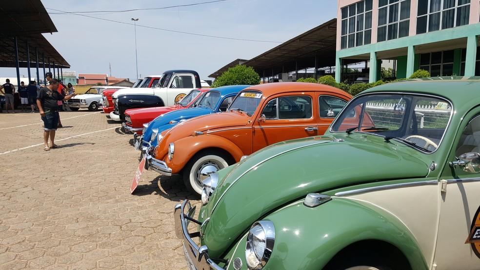 Fuscas são sensação em encontro de carros (Foto: Pâmela Fernandes/G1)