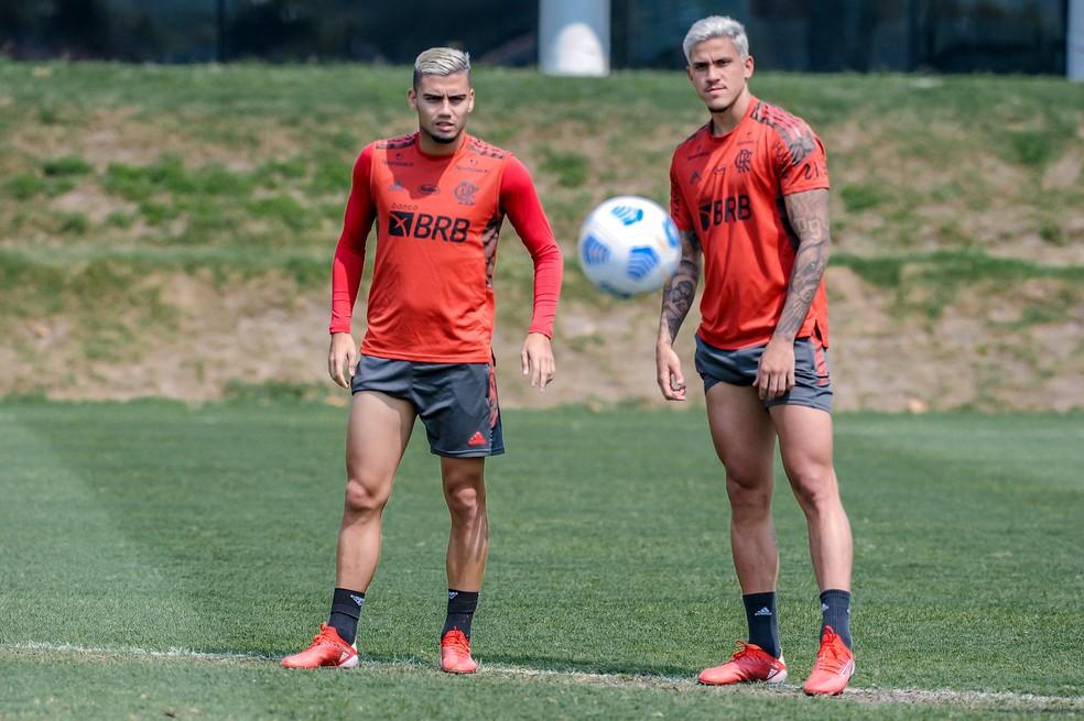 Flamengo coloca à prova escrita de 21 anos sem perder para o América-MG