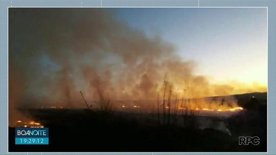 Incêndio atinge área de reflorestamento em Jaguariaíva