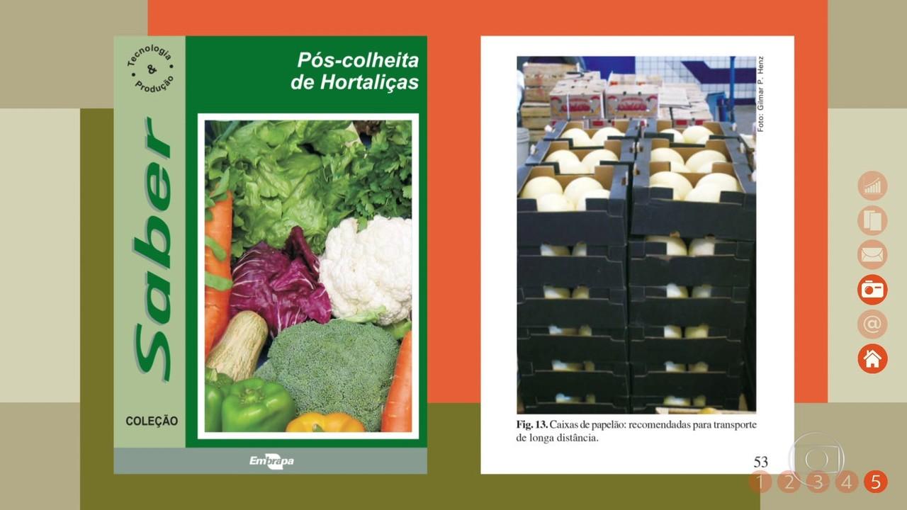 Saiba como cuidar do pós colheita de hortaliças