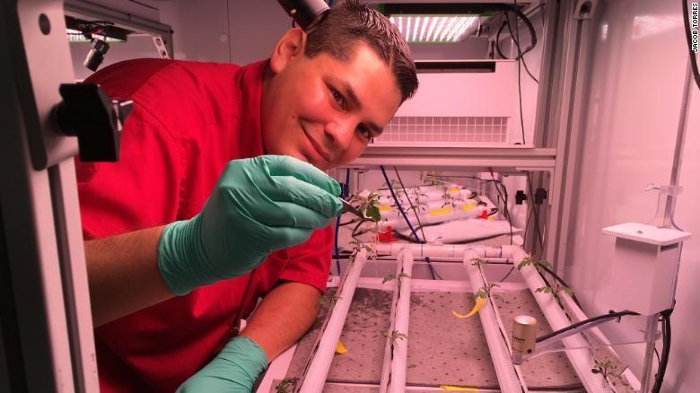 Jacob Torres nasa astronauta pimenta nasa (Foto: Divulgação/ International Space Station)