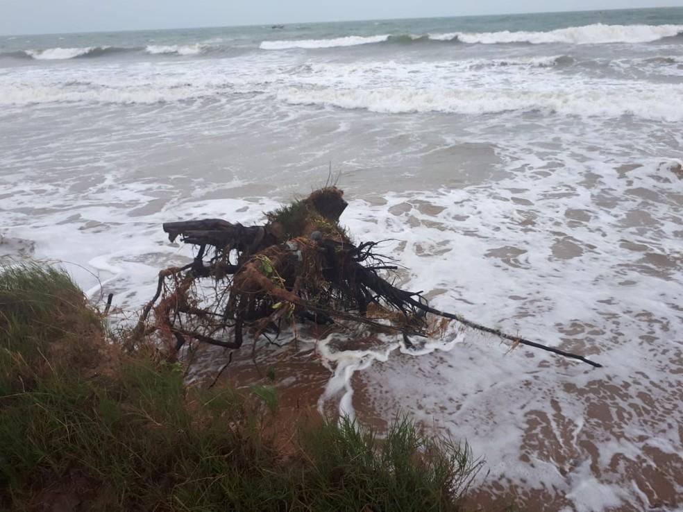 Avanço do mar tem causado transtornos na praia de Guaxindiba — Foto: Divulgação/Defesa Civil de São Francisco de Itabapoana