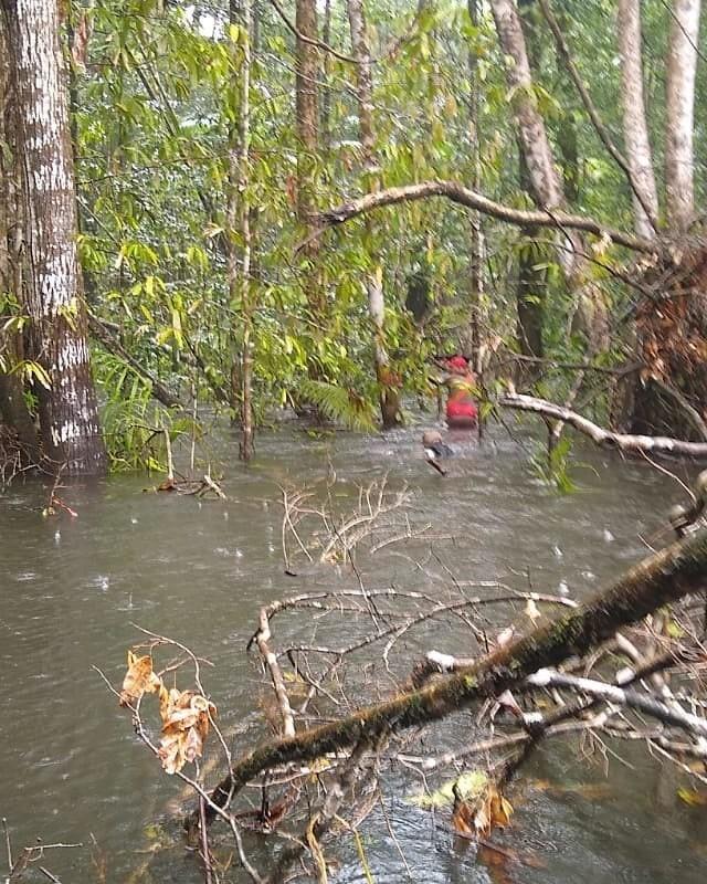 Área de buscas é ampliada para achar adolescentes sumidos há 16 dias em floresta do Amapá