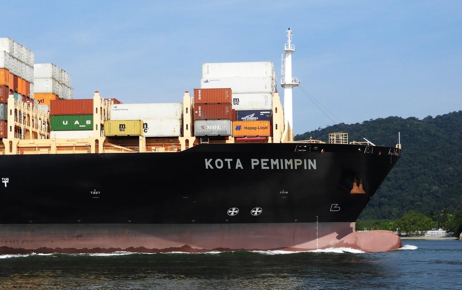 Maré baixa impede atracação de navio chinês que terá inspeção devido ao coronavírus em Santos